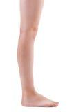 Girls leg on a white background. Straightened girls leg on a white background stock photos