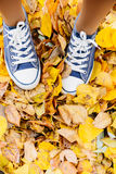 Girls legs in shoes stand on autumn leaves fall concept. Girls legs in shoes stand on dry colored leaves, autumn concept Stock Images