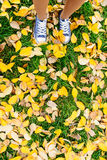 Girls legs in shoes stand on autumn leaves fall concept. Girls legs in shoes stand on dry colored leaves, autumn concept Royalty Free Stock Images