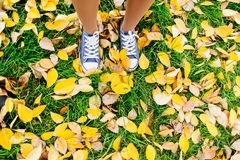 Girls legs in shoes stand on autumn leaves fall concept. Girls legs in shoes stand on dry colored leaves, autumn concept Royalty Free Stock Photography