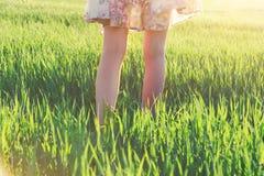 Girls legs walking in field Royalty Free Stock Images