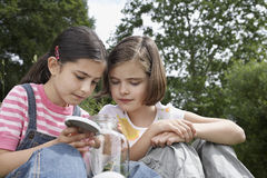Girls Looking Into Jar Of Insects Outdoors Stock Photo