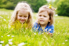 Girls on the meadow Stock Images
