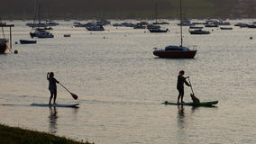 Girls paddle boarding on the Exe estuary in Devon UK. Girls with dog enjoying paddle boarding on the Exe estuary in Exmouth Devon UK #Exmouth Royalty Free Stock Image