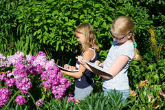 Girls paint flowers in albums Stock Images