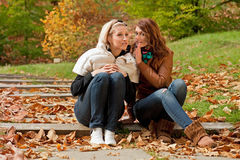 Girls in park Stock Image