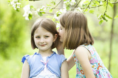 Girls in the park Royalty Free Stock Image