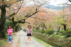 Girls at Philosopher's path in Kyoto Stock Image