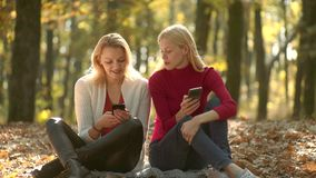 Girls with phone. Young blogger, blog concept. Two girls using smart phone. Online learning, e-learning concept. Beautiful girls in sweater in the autumn stock video