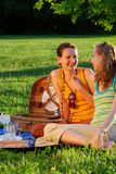 Girls on picnic Stock Images