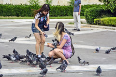 Girls and pigeons Stock Photo