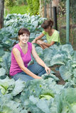 Girls  in plant of cabbage Royalty Free Stock Images