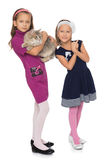 Girls play with a cat Stock Photos