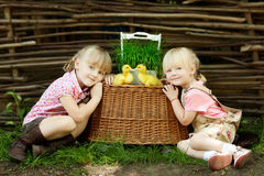Girls play with duck. In country side stock image