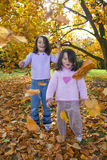 Girls playing in autumn leaves Stock Photography
