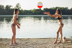 Girls playing with ball on the beach. Girls with dog playing with ball on the beach Royalty Free Stock Photo