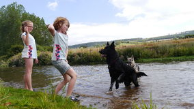 Girls playing with dogs by the river Royalty Free Stock Photography