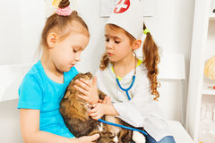Girls playing vets with stethoscope and cat Stock Images