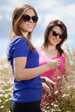Girls pluck flowers on a meadow Stock Photos