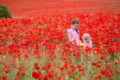 Girls with poppies Stock Photos