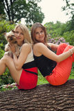 Girls and puppy Stock Photography