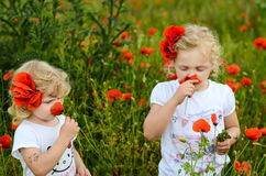 Girls with red poppy. Two girls in a red poppy field Royalty Free Stock Photo