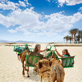 Girls riding Camel in Canary Islands Royalty Free Stock Photography