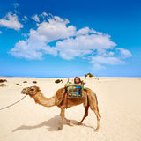 Girls riding Camel in Canary Islands Stock Photo
