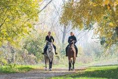 Girls  riding a horse Stock Photos