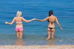 Girls at the sea. Two young women come into sea, rear view royalty free stock photo