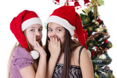 Girls sharing each other secrets on Christmas Eve. Two eleven years old girls sharing each other secrets on Christmas Eve Stock Photography