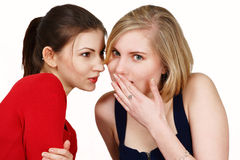 Girls sharing secret Royalty Free Stock Image