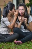 Girls sharing story or gossip. Two pretty southeast asian girls sharing exciting secret stories / gossiping (whispering to ears) with excitement at outdoor scene Royalty Free Stock Photography
