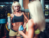 Girls with shekers relaxing in the gym Royalty Free Stock Photos