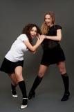 Girls in short skirts having quarrel. Alluring girls in short skirts having quarrel Stock Image