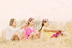 Girls siblings fixing hair country meadow Royalty Free Stock Photo