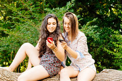 Girls sitting on a trunk using their mobile phones Stock Photo