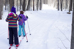 Girls skiing. Girls Cross Country Skiing in woods stock photo