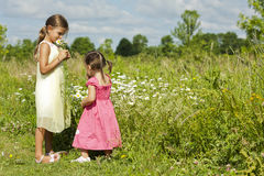Girls smelling flower Royalty Free Stock Photo
