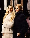 Girls with strict faces in black and white fur coats. Women with blond hair in fur coats in fur shop. Fashion and elegance concept. Women with makeup shopping royalty free stock photo