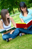 Girls studying Royalty Free Stock Images
