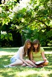 Girls studying outdoors Royalty Free Stock Photo