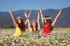 Girls on the summer meadow Stock Photography