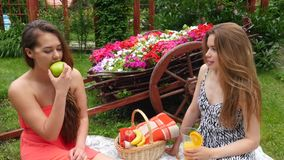 Girls Talking in Garden. 2 Girls Have A Picnic In A Garden, On A Beautiful Spring Day stock video