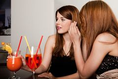 Girls talking gossips royalty free stock photo