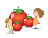Girls and tomatoes Stock Photo