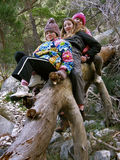 Girls on trees. Young playful girls (teen and child- best friends) riding and descend from a fallen trunk at winter vacation. Vertical color photo Royalty Free Stock Images
