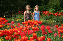 Girls in Tulip Garden Stock Photo