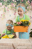Girls twins of three years care for flowers, Stock Photo