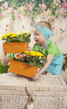 Girls twins of three years care for flowers, Royalty Free Stock Images